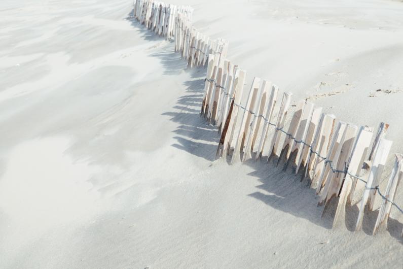 Wandering | Janneke Luursema, photographer-20