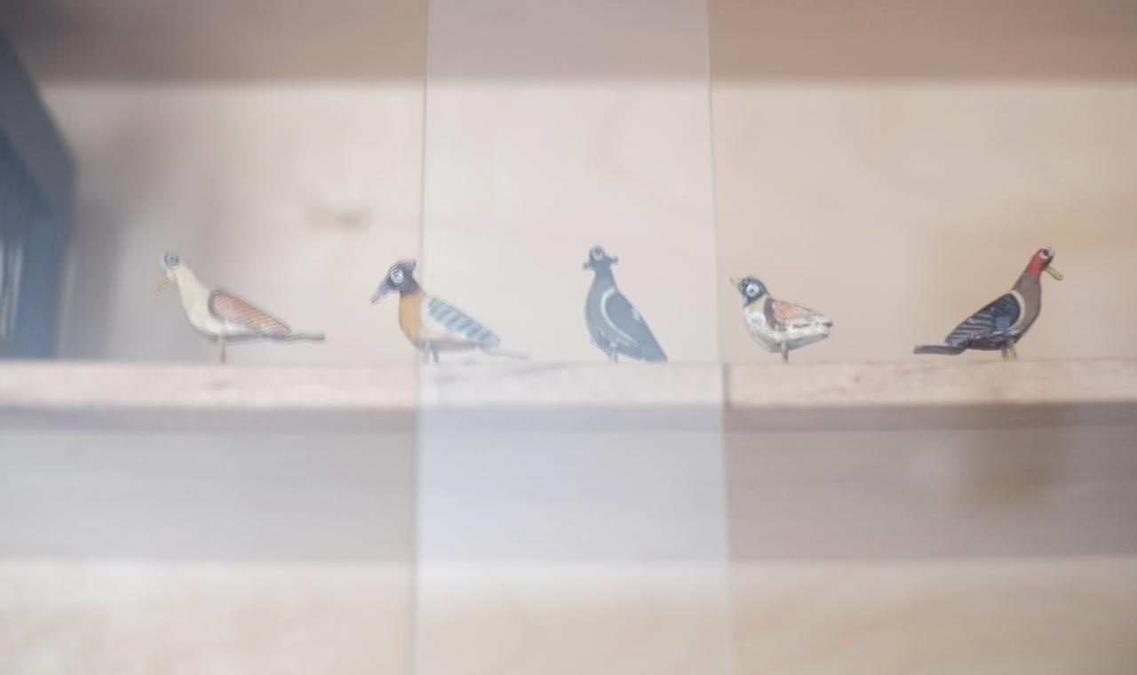Visualstrands_Decluttering-Birds