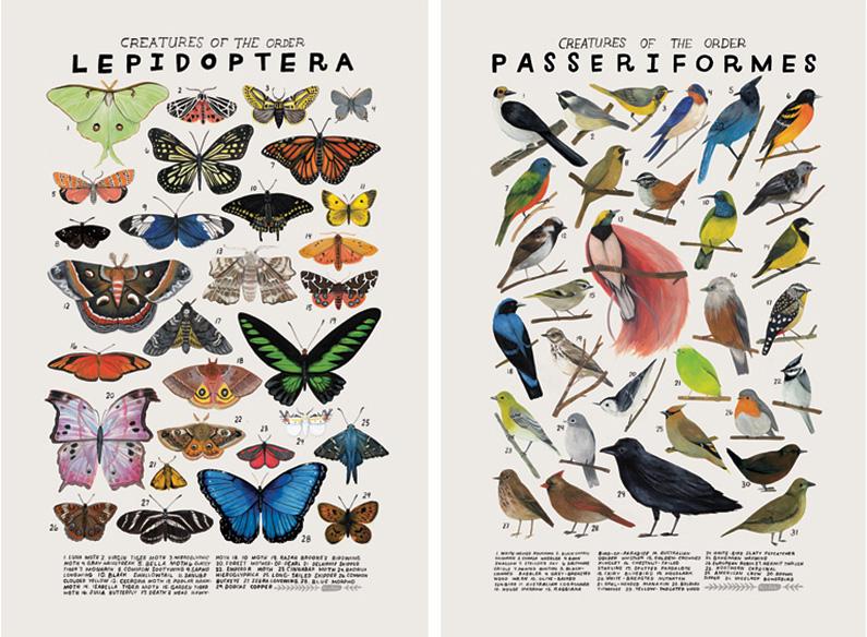 Kelzuki bird posters