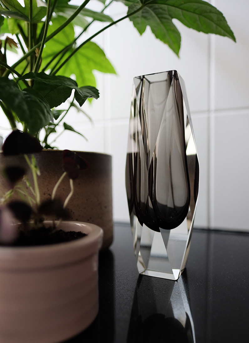 UJB_Plants-Glass8
