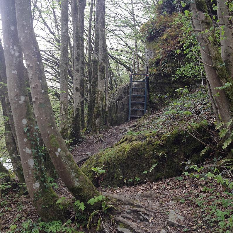 Belgian-Ardennes_steps