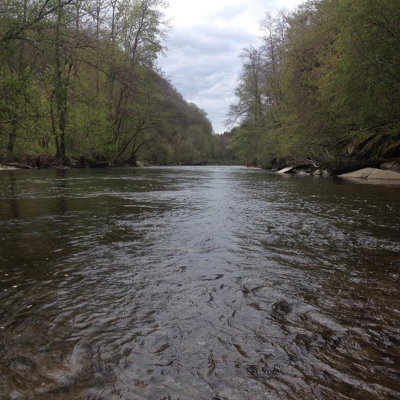 Belgian-Ardennes_water
