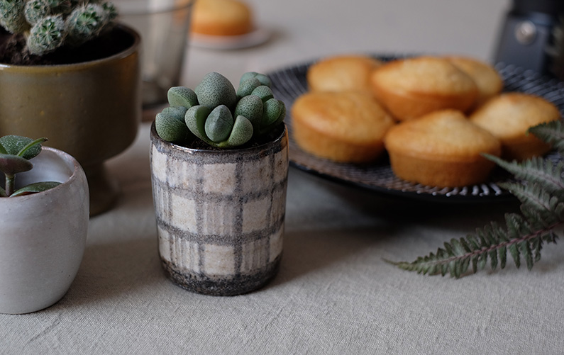 UJB-visualstrands_table-setting_succulent
