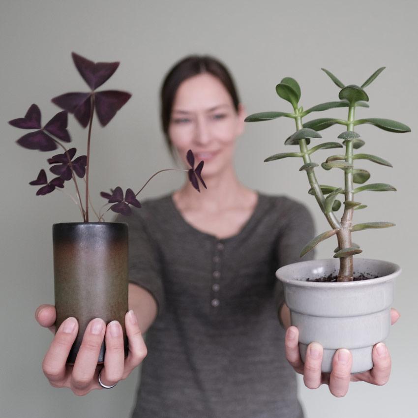 plantselfie