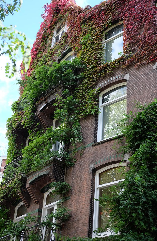 greenwalk2_urban-jungle-house