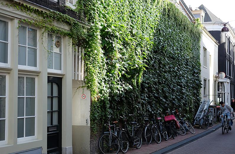 greenwalk2_courtyard-entrance