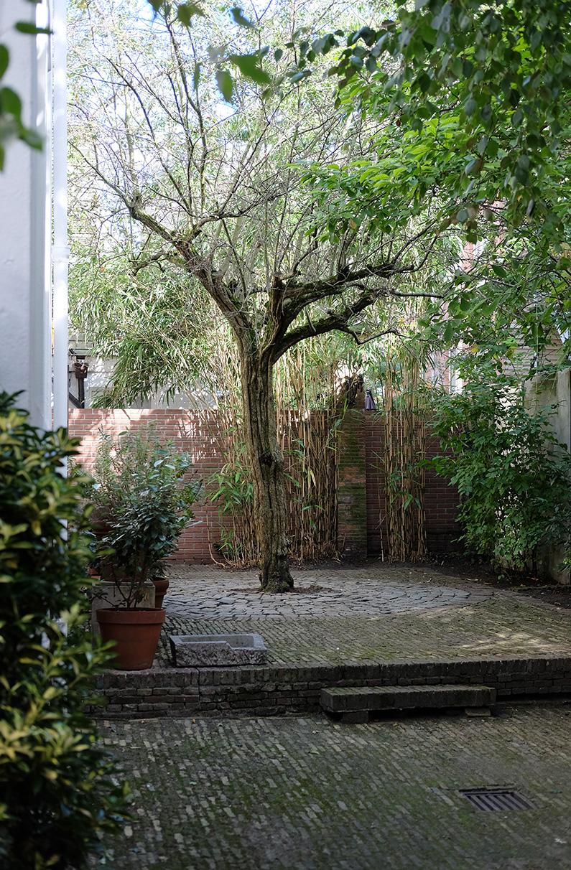 greenwalk2_courtyard-tree