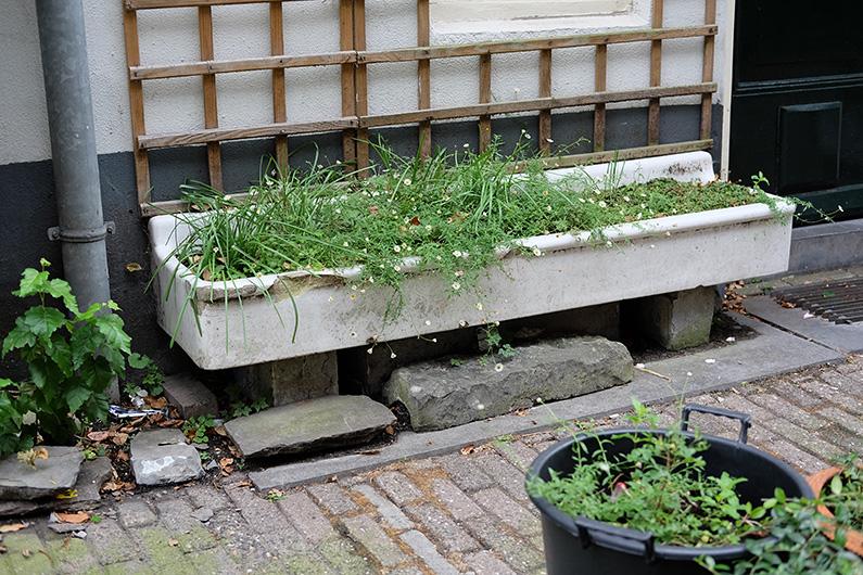 greenwalk2_green-wash-basin