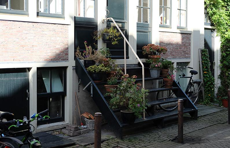 greenwalk2_plant-pots-steps